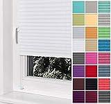 Home-Vision® Premium Plissee Faltrollo ohne Bohren mit Klemmträger / -fix (Weiß, B50cm x H100cm) Blickdicht Sonnenschutz Jalousie für Fenster & Tür