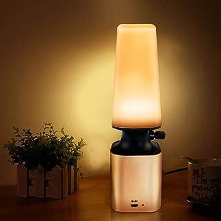 Anpress Retro LED Night Light Imitate Kerosene Oil Lamp Design with 10-Level Dimmer Control Knob Eye Care LED Desk Light USB Rechargeable Lamp for Reading/Home/Working/Office/Study