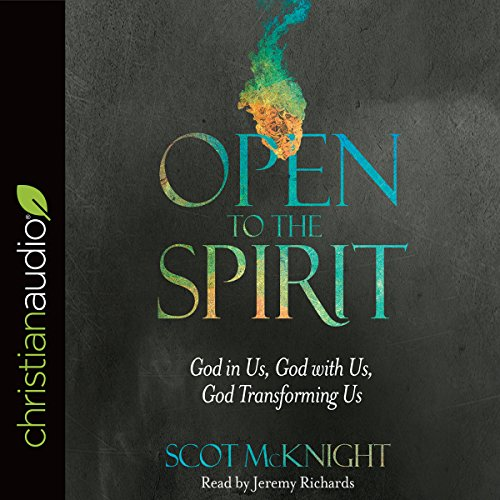 Open to the Spirit audiobook cover art