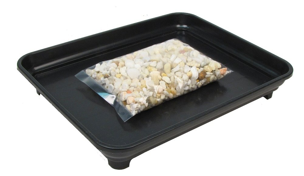Amazon Com Eve S Garden Bonsai Humidity Drip Tray 8 X 10 With Pebbles Overall Size 8 X 10 To Fit A 6 75 X 8 75 On The Bottom Of Your Pot Live