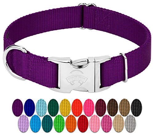 Country Brook Petz - Premium Nylon Dog Collar with Metal Buckle - Vibrant 24 Color Selection (Large, 1 Inch Wide, Purple)
