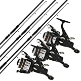 2/3 x NGT carpe Max 12FT 2 PIÈCES TIGES + 2/3 x MAX40 2BB RUNNER moulinet + 10LB fil - 3 Rods, 3...