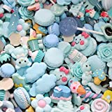 JAGENIE Resin Charms Beads Accessories DIY Phone Shell Jewelry Slime Filler Doll House 4