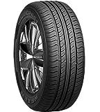 Roadstone CP661  - 205/55/R16 91H - E/C/73 - Sommerreifen
