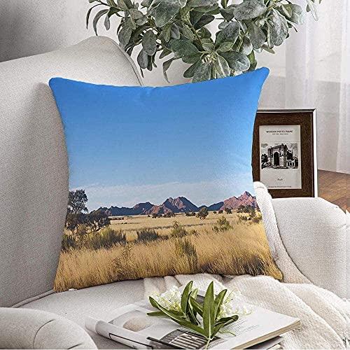 Decorativo Cuscino Copertina Morbida Dune Selvagge Cielo Savana Africana Paesaggio Namibia Rosso Verde Sud Africa Parchi naturali all'Aperto di Acacia 20'x20'