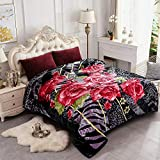 JYK Plush Blanket Queen Size – 8lbs 2 Ply Reversible Soft Fuzzy Warm Korean Style Faux Mink Fleece Bed Blanket for Autumn Winter (Black Rose+Solid Color Back, Queen)