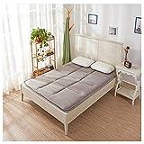 WTTWW Colchón Tatami, Dormitorio Plegable, Estudiante de Simple/Doble colchón de Esponja Suave colchón, Cuatro Estaciones universales, Gris,150 * 200/59 * 79inch