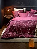 De Witte Lietaer Violetta - Juego de Funda nórdica y Fundas de Almohada, algodón, 240 x 220 cm, Color Rosa Oscuro