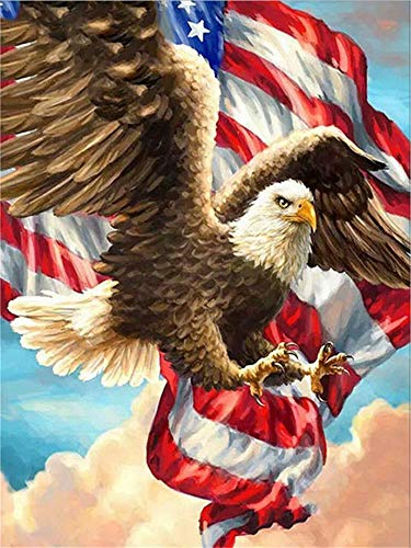 Diy Oil Painting by Numbers Kit theme PBN Kit for Adults Girls Kids Christmas Decor Decorations Gifts, Animal Eagle(without Frame)