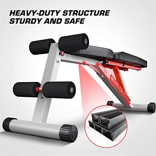 Pelpo Weight Bench for Full Body Workout, Adjustable Workout Bench Press for Home Gym Strength Training, Incline Decline Utility Weight Bench with 6 Positions, Silver Frame