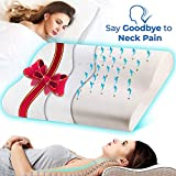 Soft & Kind Contour Memory Foam Pillow Best Orthopedic Sleeping Pillows for Pain