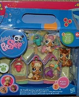 Best littlest pet shop triplets ponies Reviews