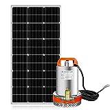 Pumplus 100W Solar Well Pump System, 100W Solar Panel + 12V Large Flow Solar Pump for Remote Watering, Garden, Farm Irrigation, Tank Filling