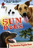 DVD Cover: Sun Dogs