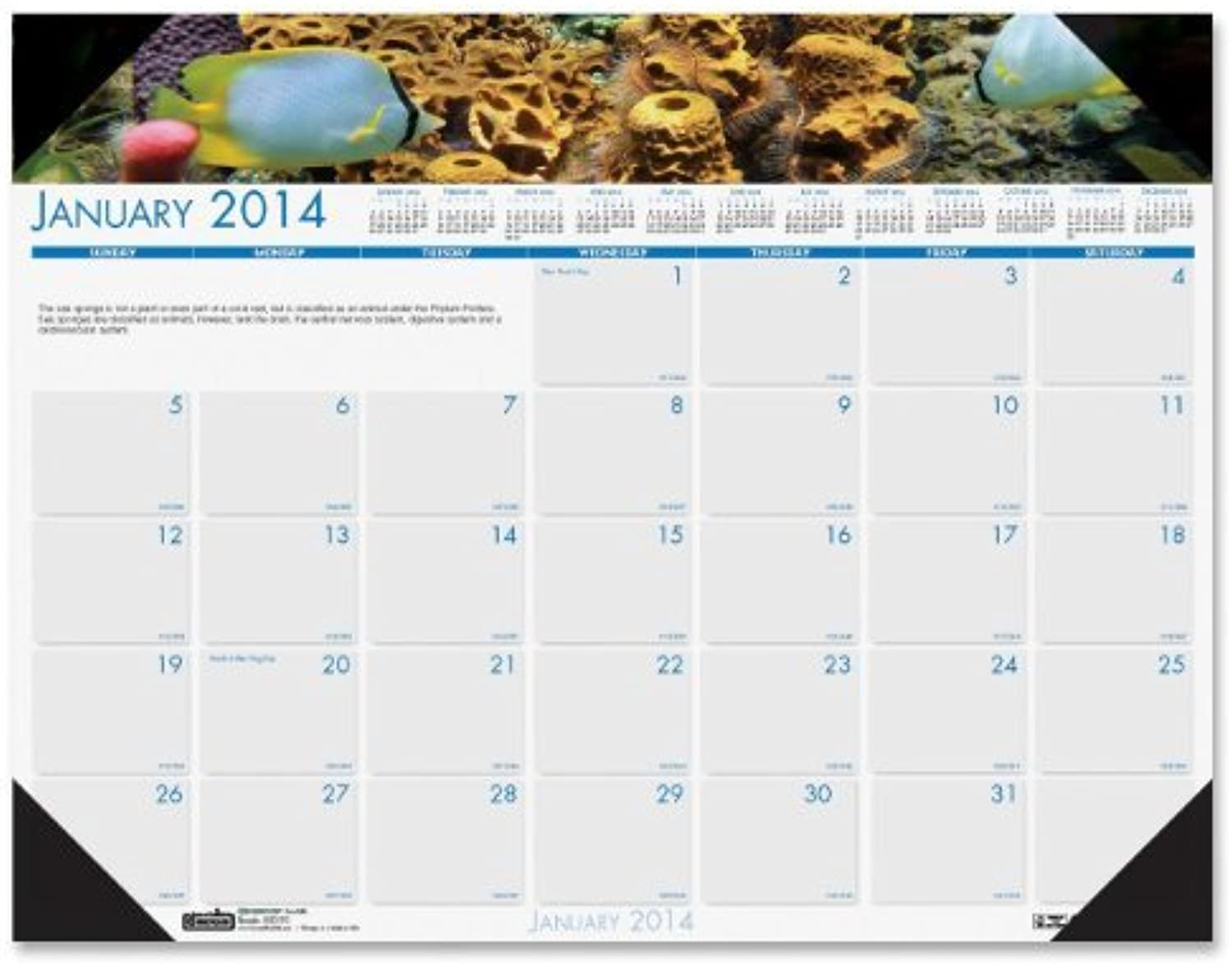 House of Doolittle Earthscapes Sea Life Desk Pad Calendar 12 Months January 2014 to December 2014, 22 x 17 Inches, Farbe Photo, Recycled (HOD193) by House of Doolittle B0141N39ZE | Spielzeugwelt, spielen Sie Ihre eigene Welt