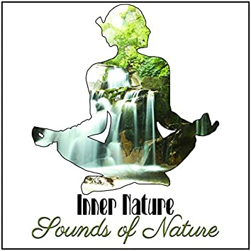 Inner Nature: Sounds of Nature – Relaxing Music, Rain and Ocean Melody to Reduce Stress, Best for Meditation, Flora and Fauna Music