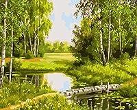 DMFNGJSD 数字油絵 フレームレス 、数字キット塗り絵 手塗り DIY絵-シングルボードブリッジ-デジタル油絵 40x50 cm