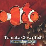 Tomato Clownfish Calendar 2021
