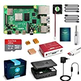 LABISTS Raspberry Pi 4 Model B 4GB RAM Starter Kit, RPi...