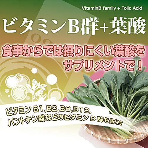 株式会社オーガランド お徳用ビタミンB群+葉酸 270粒 約3ヶ月分
