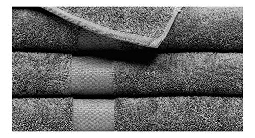 ISABELLA CROMWELL Plush and Absorbent 100% Cotton Bath Towel Set Includes 4 Cotton Low Twist Bath Towels - Charcoal Grey