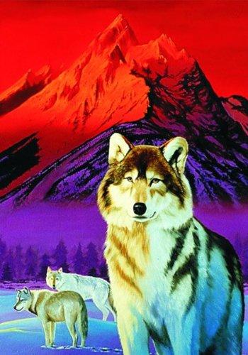 M.I.C. 397.4 - Faszination Wolf (Metallic- und Holography-Effekt) - Puzzle 1000 Teile