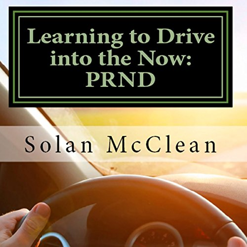 Learning to Drive into the Now audiobook cover art