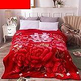 YJJSL Manta Doble Capa Grueso Súper Suave Calor Raschel Manta Invierno Gruesa Rojo Manta Alta (Size : 200cmX230cm)