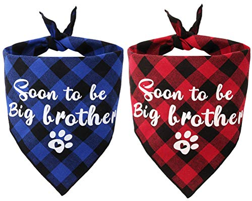 JPB Sooner to be Big Brother Dog Bandana