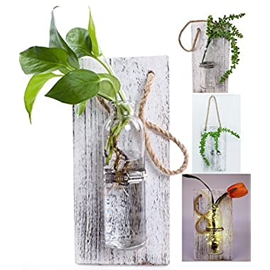 Rustic Home Décor Wall Art Decoration Solid Wooden Board (Retro polished) Hanging Planters Wall Vases Hydroponic Plants Hanging Glassware for Home Garden Living Room Decor by Eanjia (no flower)(White)