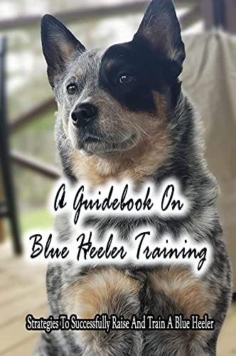 A Guidebook On Blue Heeler Training: Strategies To Successfully Raise And Train A Blue Heeler: Training Materials For Blue Heeler (English Edition)