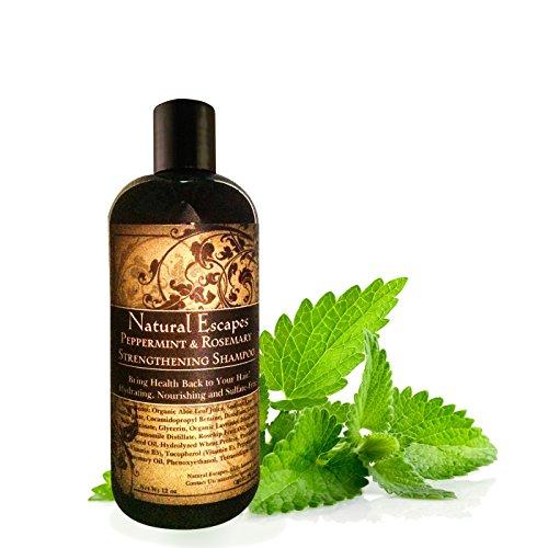 Peppermint & Rosemary Strengthening Shampoo | Organic Shampoo for Thinning Hair & Hair Loss |...