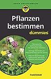 Pflanzen bestimmen für Dummies