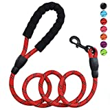 Petmegoo 5ft 1/2in Strong Red Dog Leash for Medium Dogs & Large Dogs - Highly Reflective Puppy Leash with Soft Padded Anti-Slip Handle - Heavy Duty Rope Leash