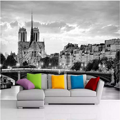 Pbldb Custom Wall Paper 3D Hd France Notre Dame De Paris Night View Color Photo Wallpaper Black and White Mural Wallpaper 3D Murals-450X300Cm