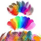 300 Plumas Naturales,Plumas Naturales Coloridas,Plumas decorativas de bricolaje,plumas para atrapasueños,artesanía natural Plumas,para manualidades, bodas, cumpleaños,decoración de plumas (300)