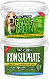 Pro-Kleen 2.5KG Lawn Feed Fertiliser for Thicker Greener Grass 2.5KG Iron Sulphate Dry
