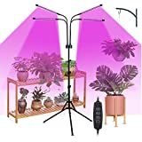 Lifcasual 40 W 80 LED Plant Growing Light con Control Control Control Control Full Spectrum Ajustable Gooseneck Grow Light with Stand 4/8/12H Timer 9 Brightness Leves for Indoor Plant Seedlings Tipo 1
