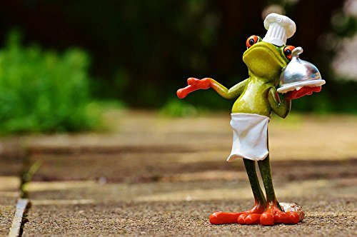 Gifts Delight Laminated 36x24 inches Poster: Frog Cooking Eat Kitchen Gourmet Food Preparation Funny Frogs Cute Sweet