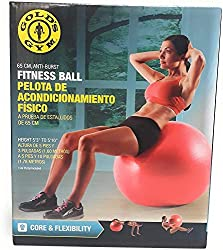 The 10 Best Gold's Gym Exercise Balls