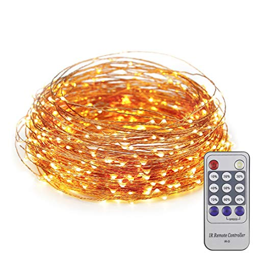 ER CHEN 165ft Led String Lights,500 Led Starry Lights on 50m Copper Wire String Lights + 12V DC Power Adapter(Warm White)