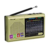 Rechargeable AM / FM/SW Radio Small shortwave Radio/Wide FM Compatible / MP3 Player, Convenient to Carry, with Bluetooth Function, USB Memory/TF Card Compatible Radio/Speaker (Gold)