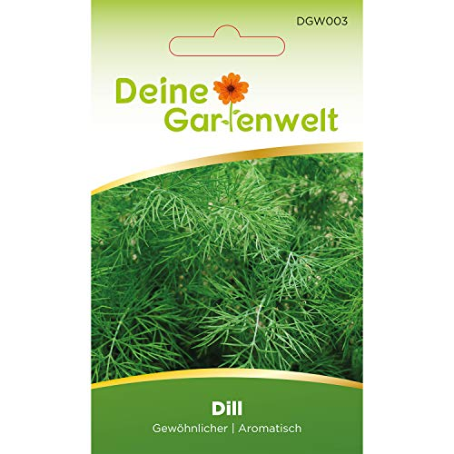Dill Samen (Gewöhnlicher) | Dillsamen | Saatgut für Dill-Pflanzen | Kräutersamen