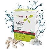 QuantaMag  Magnésium Marin + Taurine + Vitamine B6   Meilleure Assimilation  Doux pour le ventre   Boîte de 60 gélules   2 mois  Famille   Gélules végétales  Complément alimentaire   PhytoQuant