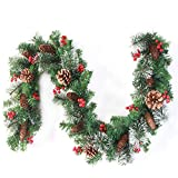 Top 10 Frosted Garlands