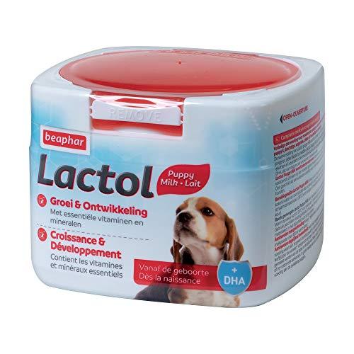 Beaphar - LACTOL - Lait maternisé pour chiot en poudre - Enrichi en DHA - Source de protéines de haute qualité - Pour chiot non sevré, femelle gestante ou allaitante et chien âgé ou malade - 250 g