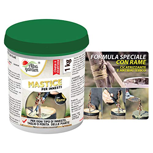 Albagarden - Mastice Per Innesti e Potature ++ CON RAME ++ Antibatterico Pasta Cicatrizzante Curativa Per Ferite Piante Alberi Arbusti Bonsai x 1 Kg