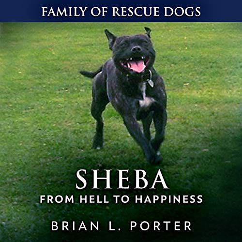 Sheba cover art