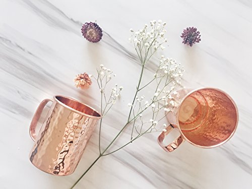 Moscow Mule Copper Mugs |16oz Set of 2 | Beer Mug Stein Shape, More Comfortable Handle - Danae Supply Co.