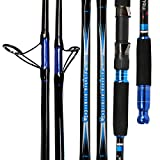 Fiblink Saltwater Fishing Rod Carbon Fiber Jigging Rod with 2 Piece Twin-Tip Spinning & Casting...